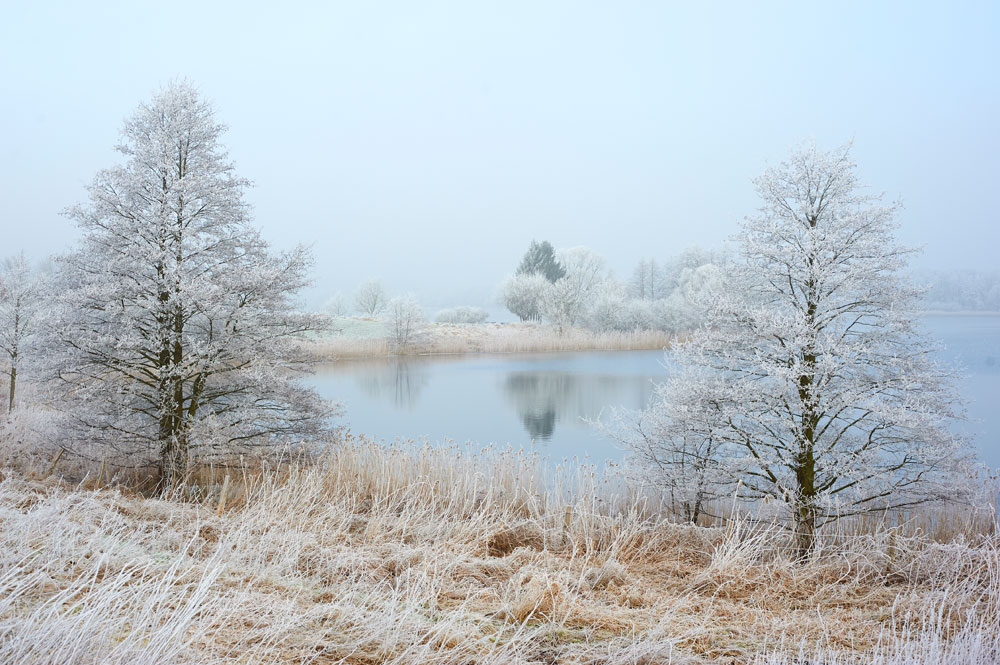 Tressower-See-Winter_12
