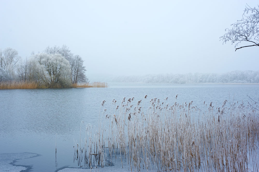 Tressower-See-Winter_9