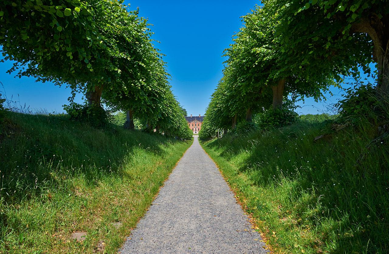 schloss-bothmer-lindenallee_5085